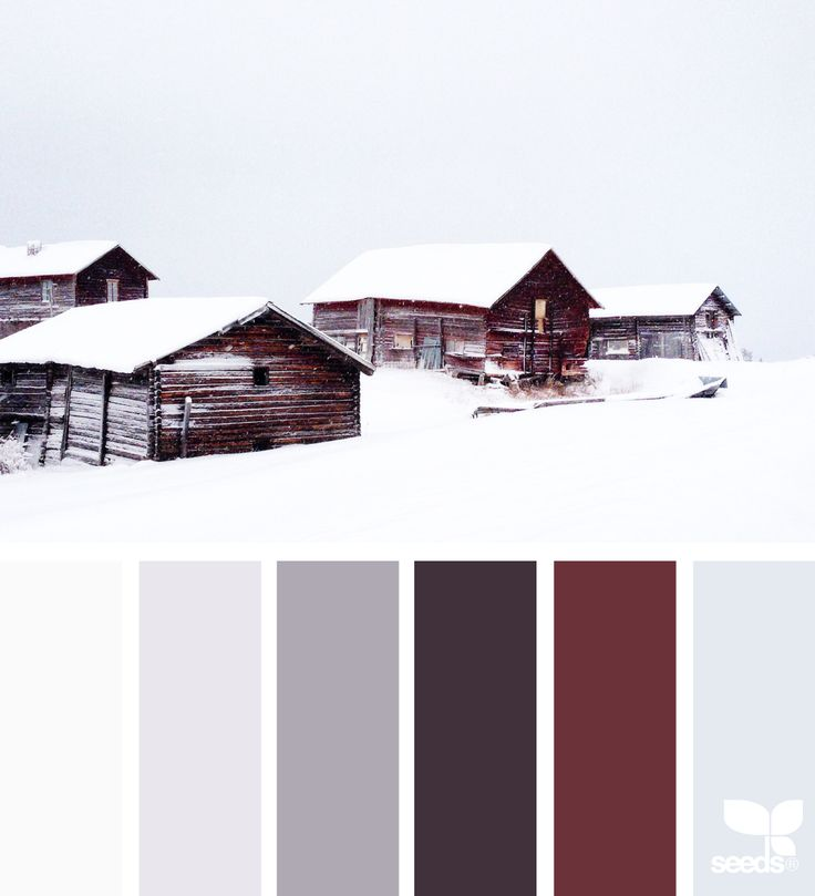 { winter hues } image via: @bbaumish