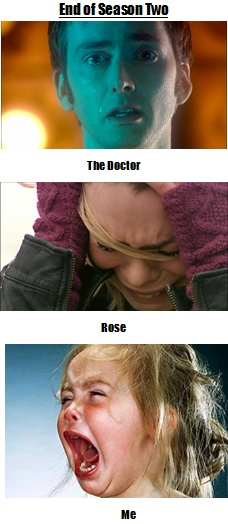 Hit the nail on the head there.  :(Nerd Stuff, Definition True, Rose, Nerd Side, Geeky Pretty, Doctors Who, Whovian Stuff, True Stories, Yup Exactly