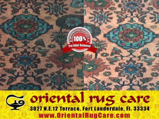 Oriental Rug Cleaning Process In Coral Gables Rug