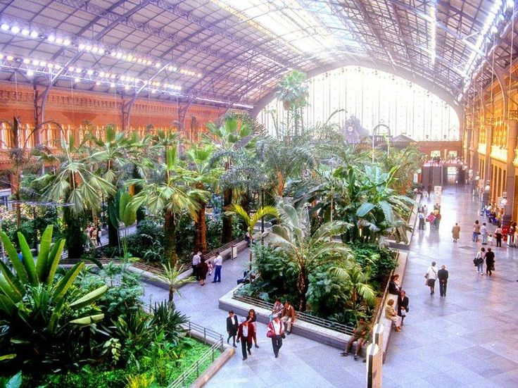 The World's Most Beautiful Train Stations ::: Atocha Station  Madrid, Spain