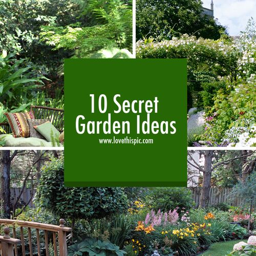 Small Garden Secrets: Gardens, Garden Ideas And Home