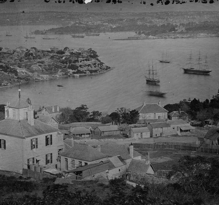 Sydney Harbour 1875