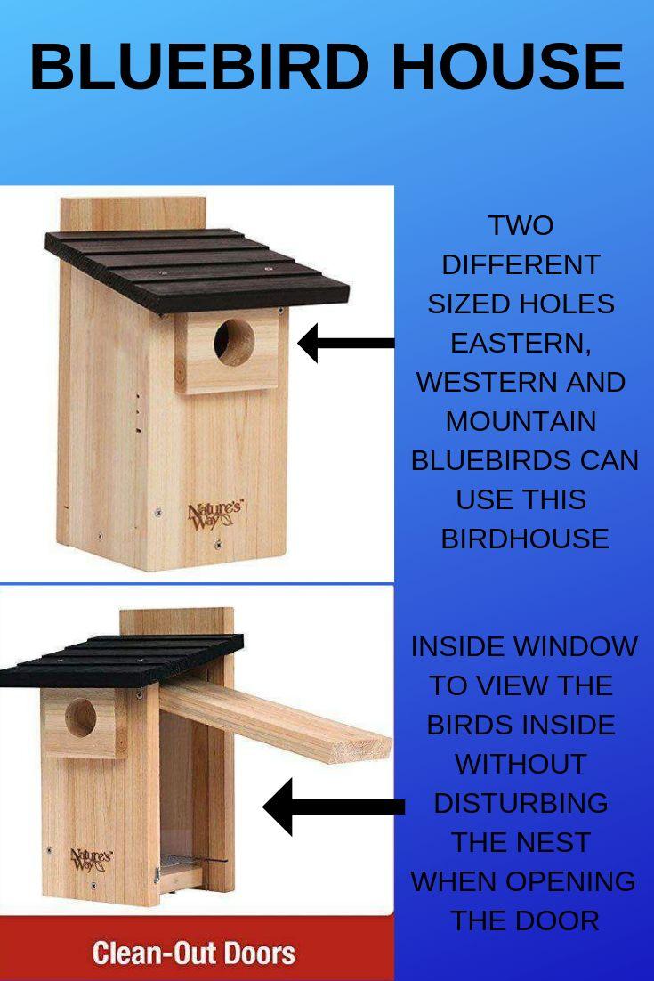 how far apart to place bluebird houses
