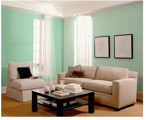1000 Images About Aloe Sherwin Williams Color Of The