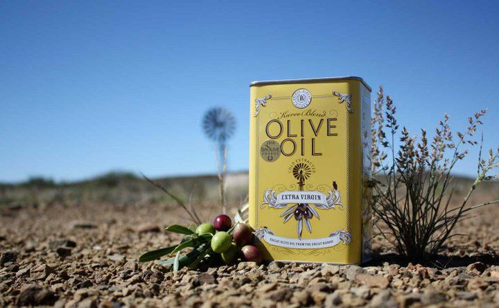 Prince Albert Olive Oil in the Karoo