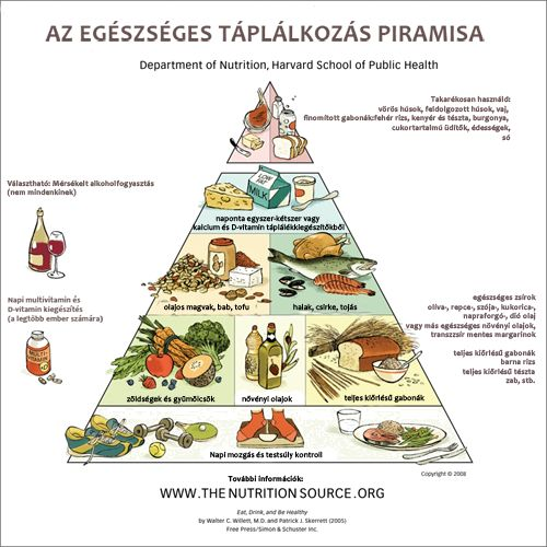 Forever Living products, aloe vera, Thetahealing, táplálkozáspiramis