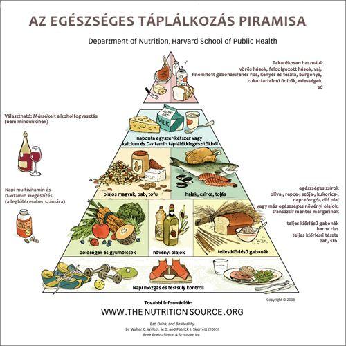Az új táplálkozási piramis egészen máshogy néz ki, mint 20 évvel ezelőtti társa: a legfontosabb a mozgás!