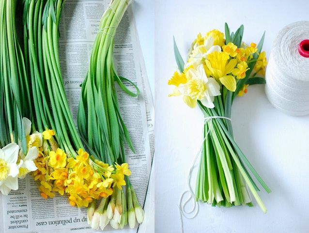 25 Spring Flower Ideas!