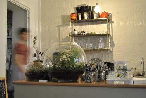 #terrarium inside Tuck Shop #Paris