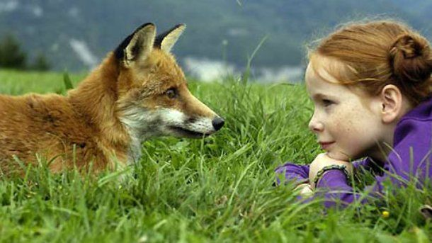 An image from the film, The Fox and the Child Photograph courtesy of the filmmaker