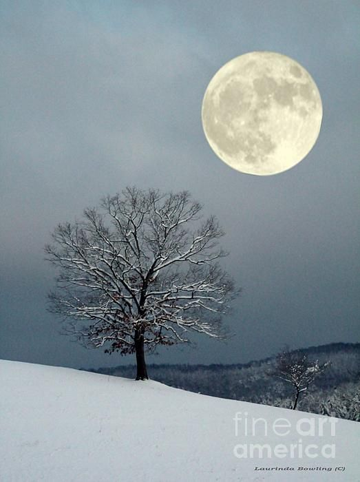 Winters Moon by Laurinda Bowling