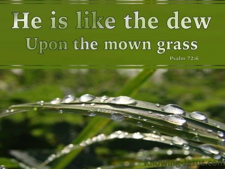 http://wallpaper.knowing-jesus.com/psalms/psalm-72-6-he-is-like-the-dew-on-the-mown-grass-green Psalm 72-6 He Is Like The Dew On The Mown Grass green - Christian Wallpapers