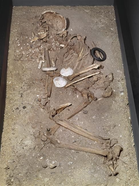 Photothèque | Musée archéologie nationale