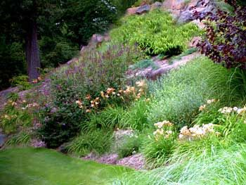 steep slope landscaping idea. Totally could use this!  Prevent erosion and an eyesore!