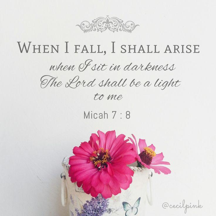 Cecilpink — ~ Micah 7: 8 ~
