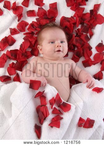 Pink petals would be better valentine picturevalentine photoschildren photographynewborn photographyphotography ideasbaby