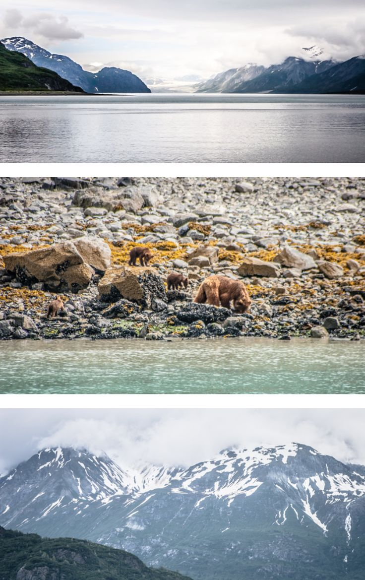 Less than a month to go until we kick off our trip! Planning the Great Alaska Road Trip by RV | Gone with the Wynns #travel #rv #rving #camping #alaska
