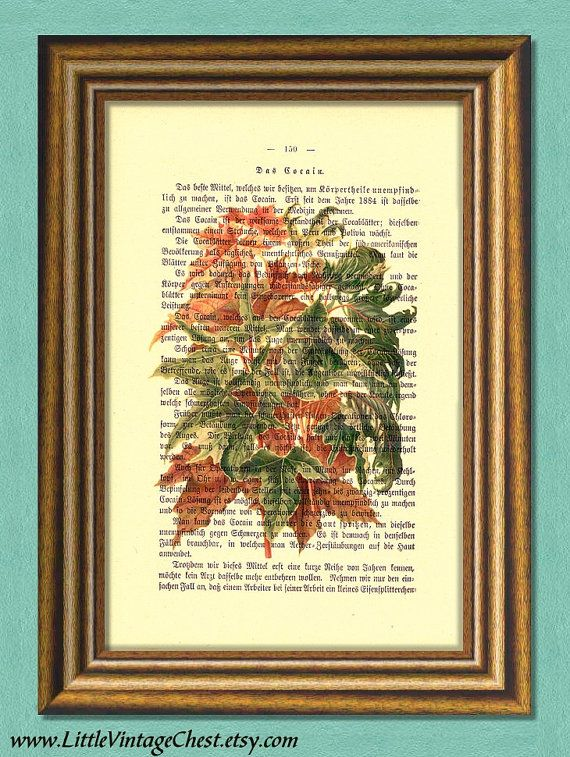 ACER LEAVES Dictionary Art print Botanical by littlevintagechest, $7.99