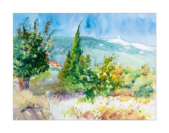 Vaucluse, Bedoin, Mont Ventoux
