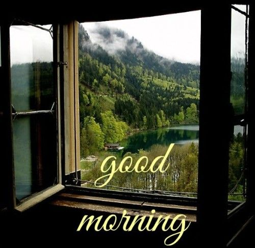 Good Morning Card Window open to Nature
