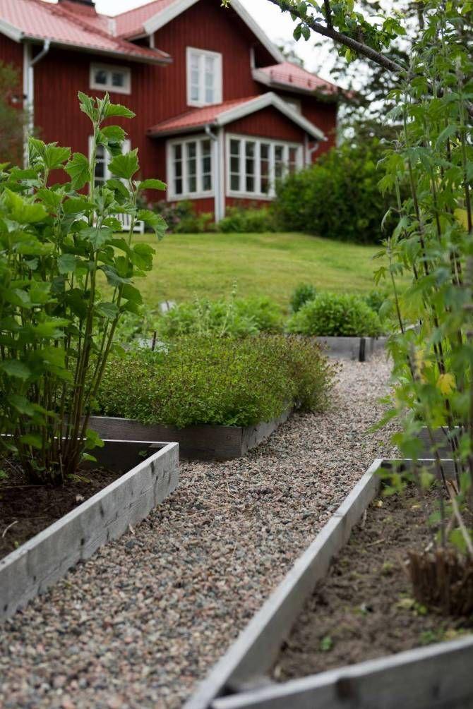 Läketrädgården anlade Sofia och Mats Erik för några år sedan. Halva gräsmattan grävdes bort, den var alldeles för stor och tog mycket tid att sköta. Alla växter som odlas här används på gården i olika preparat.