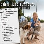 Urlaub mit Hund – was ist zu beachten?
