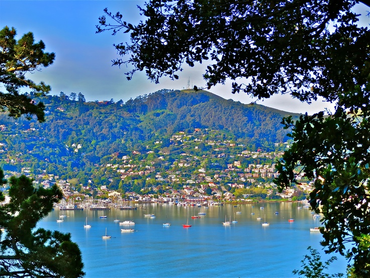 The view of Sausalito from Tiburon.: California Hotels, Favorite Places, California Beauty, Northern California, Road Trips, Real Estate, Restaurant, San Francisco, Sausalito California