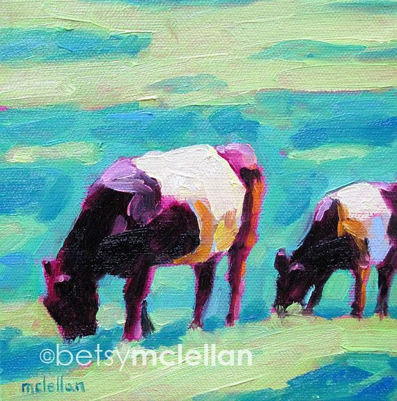 Belted Cows  Galloway Cows  Giclee Print by betsymclellanstudio, $10.00