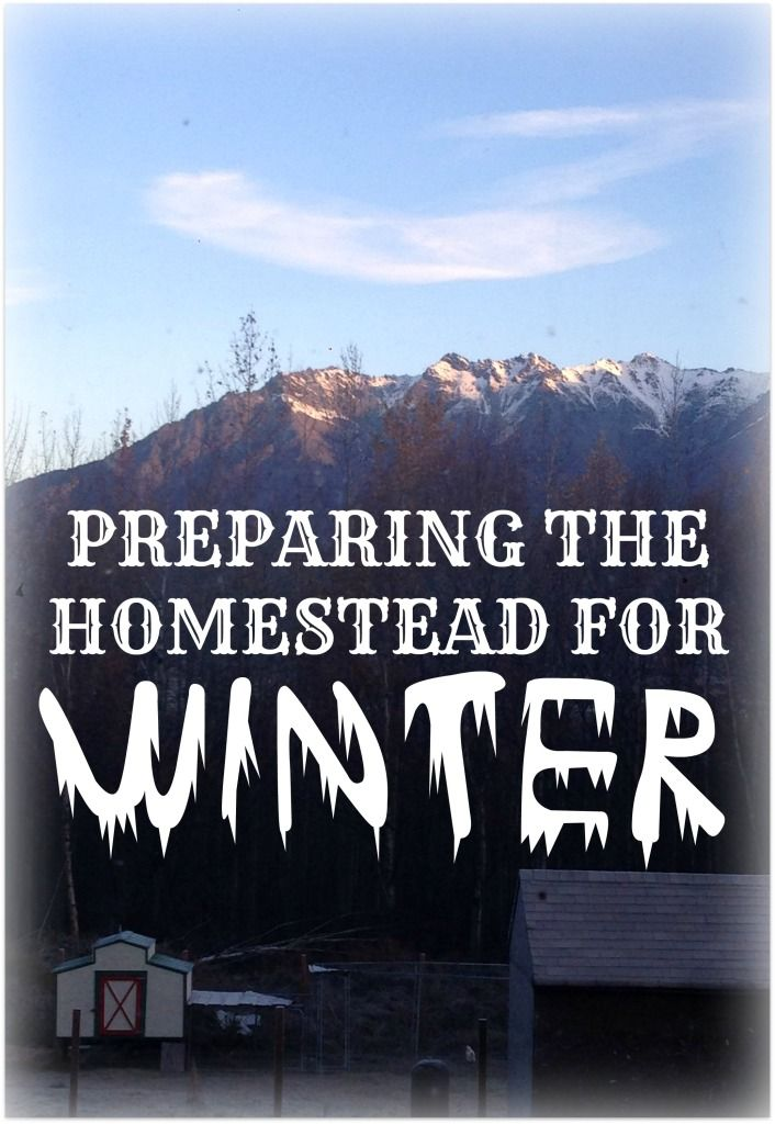 Winterizing the Homestead - IdlewildAlaska