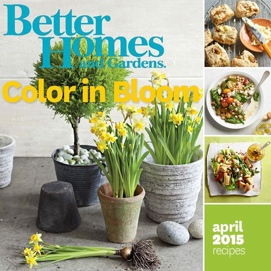 54 best Better Homes and Gardens Monthly Recipe Collections images ...