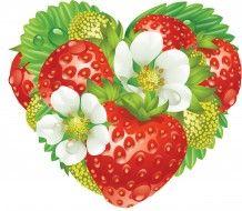 векторная графика, еда , food, фон, цветы, клубника