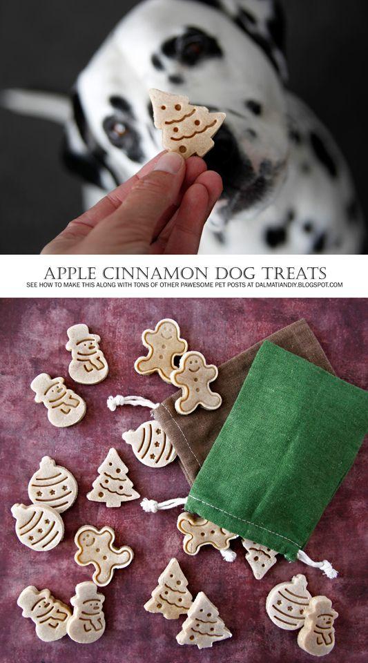 DIY Dog Treat Recipes | {RECIPE} Apple Cinnamon Christmas Dog Treats