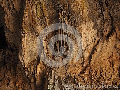 Wall of Corykion Cave (Cave of Pan), high above Ancient Delphi and Arachova, near Mount Parnassos, Greece,