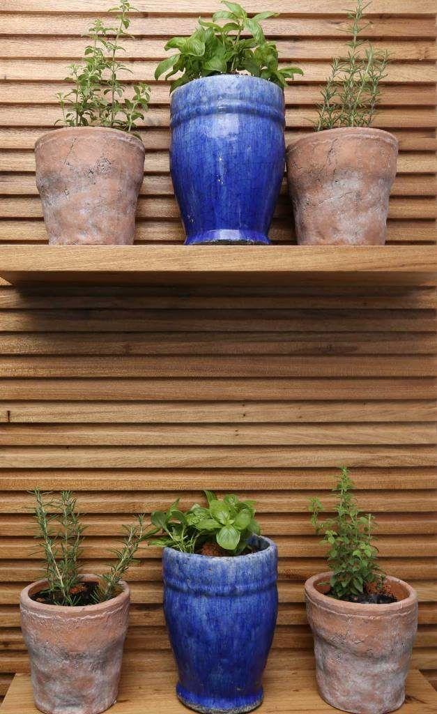 Horta em casa. Painel de madeira com prateleira e vasos para cultivo de ervas dentro de casa. Horta na varanda. Vasos cerâmicos. Blog : Danyela Corrêa   Arquitetura e Interiores