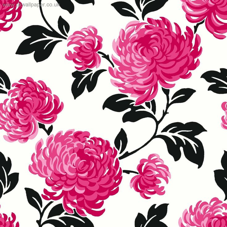 131 best floral prints images on pinterest floral patterns floral fine decor bloom wallpaper in pink white and black mightylinksfo