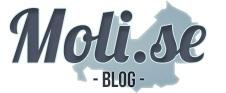 L'idea di Moli.se, portale fondato da Giuseppe Di Lalla (seo specialist e web marketer) e Thomas Tozzi (fotografo), nasce con il preciso intento di colmare questo vuoto di visibilità. Moli.se è un portale basato sulla fotografia che intende racchiudere tutte le migliori strutture ricettive e attività artigianali presenti sul territorio. Sviluppato con l'obiettivo di fornire in maniera chiara e immediata tutte le informazioni utili al visitatore.