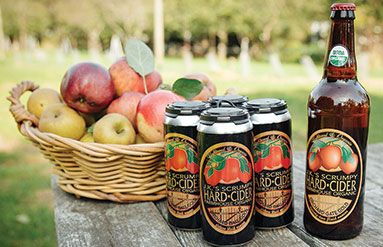 """What is """"Organic Scrumpy"""" Cider"""