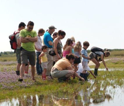 Tips voor Kids Texel is een ideaal vakantie-eiland voor kinderen. Er is zo veel te beleven! Op stap met natuurmonumenten!