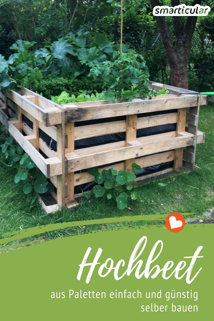Hochbeet Selber Bauen Einfach Und Preiswert Aus Paletten 2019 Growing Vegetables Pallets Garden Herb Garden Pallet