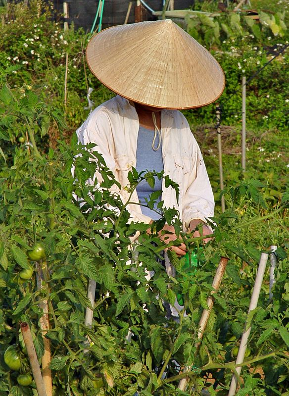 I had a papasan who worked in my garden. He rode up on his bicycle and wore a hat like this.