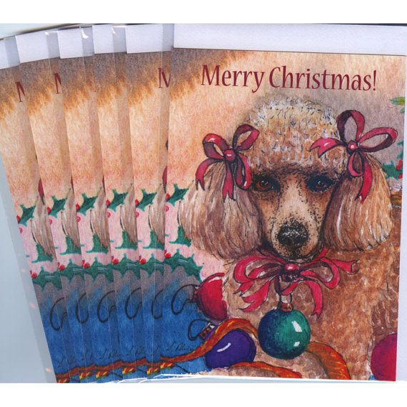 6 x apricot poodle dog greeting holiday cards  she was