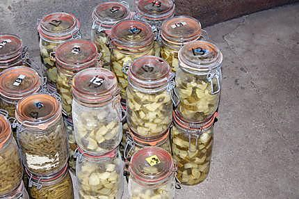 La meilleure recette de Comment faire des stérilisations (partie 1 : les légumes)! L'essayer, c'est l'adopter! 5.0/5 (9 votes), 44 Commentaires. Ingrédients: Des pots à stériliser Un stérilisateur ou une cocotte minute des légumes de l'huile de coude hihihi