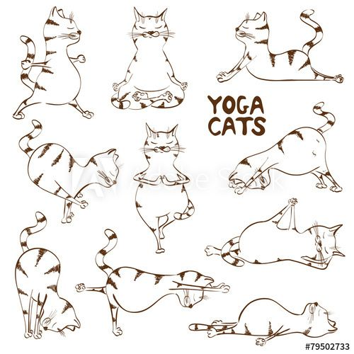 Funny sketch cat doing yoga position