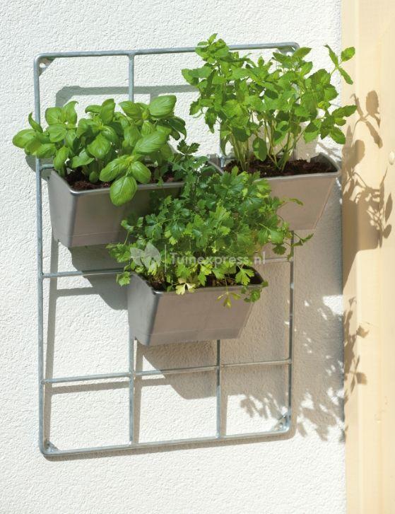 Zelf kruiden kweken op een kleine ruimte? Met dit set kunt u eenvoudig verticaal tuinieren en het staat ook nog eens hartstikke hip in uw tuin of op uw balkon! Zet u er liever bloemen in? Ook dat kan natuurlijk! Richt het rek in naar eigen inzicht!  #verticaaltuinieren #verticaal #plantenrek #kruiden #balkon #bloemen