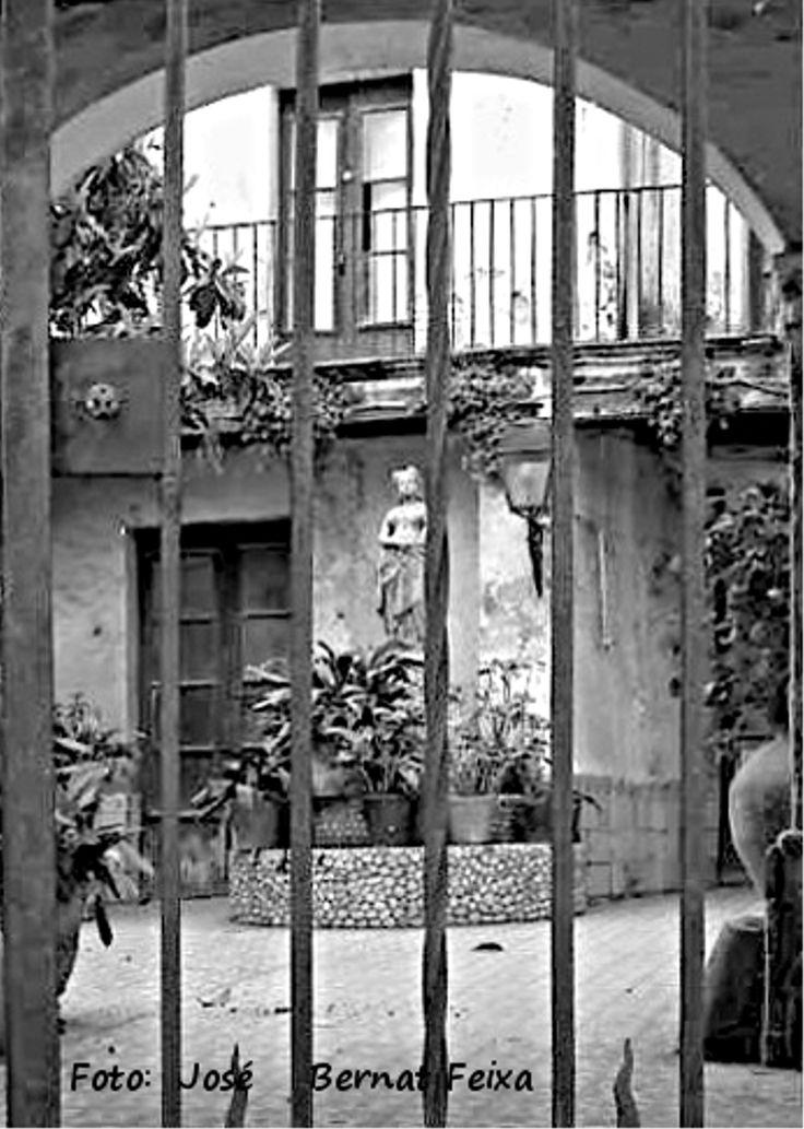 25 beste idee n over zwarte hek op pinterest hek horizontaal hek en hekwerk - Bamboe hek ...