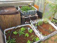 17 meilleures id es propos de serre aquaponique sur pinterest serres et aquaponie for Installer une serre de jardin