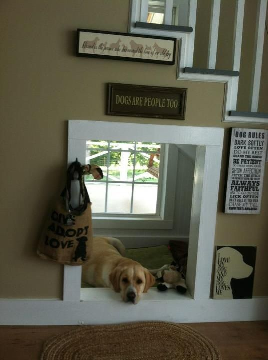 """THIS IS AWESOME!!! Gracie's """"dog house"""" under our stairs. She loves having her own space and window."""
