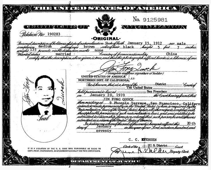 "chinese immigrants in america essay ""everywhere immigrants have enriched and strengthened the fabric of american life,"" was the words of former american president, john f kennedy (american immigration: quotes about immigration) immigrants have been in america for many years now."