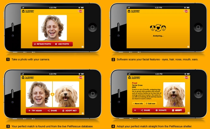 Dog-A-Like FB/mobile image matching app for Pedigree