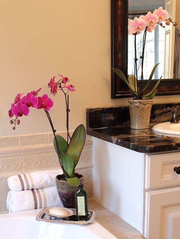 Deko Mit Blumen Orchideen 109 Frische Und Stilvolle Ideen